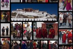 2013.12 Tibet Pilger