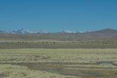 2013.12.05_Xining_-_Lhasa__2___14_von_32_