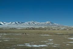 2013.12.05_Xining_-_Lhasa__2___16_von_32_