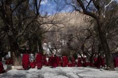 2013.12.07_Lhasa__1___37_von_65_