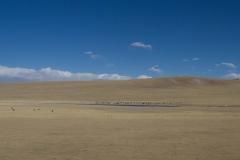 2013.12.12_13_Lhasa_-_Xi_an__19_von_33_